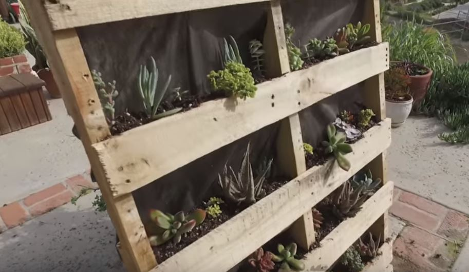 Izradite vertikalni vrt od drvenih paleta