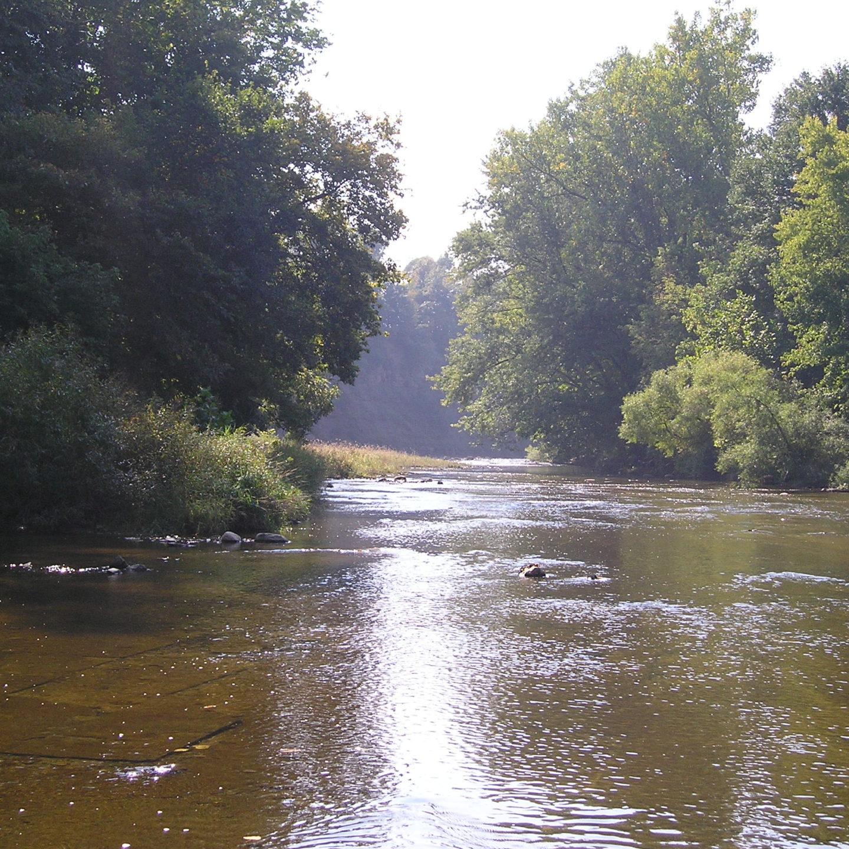 Želimo žive rijeke