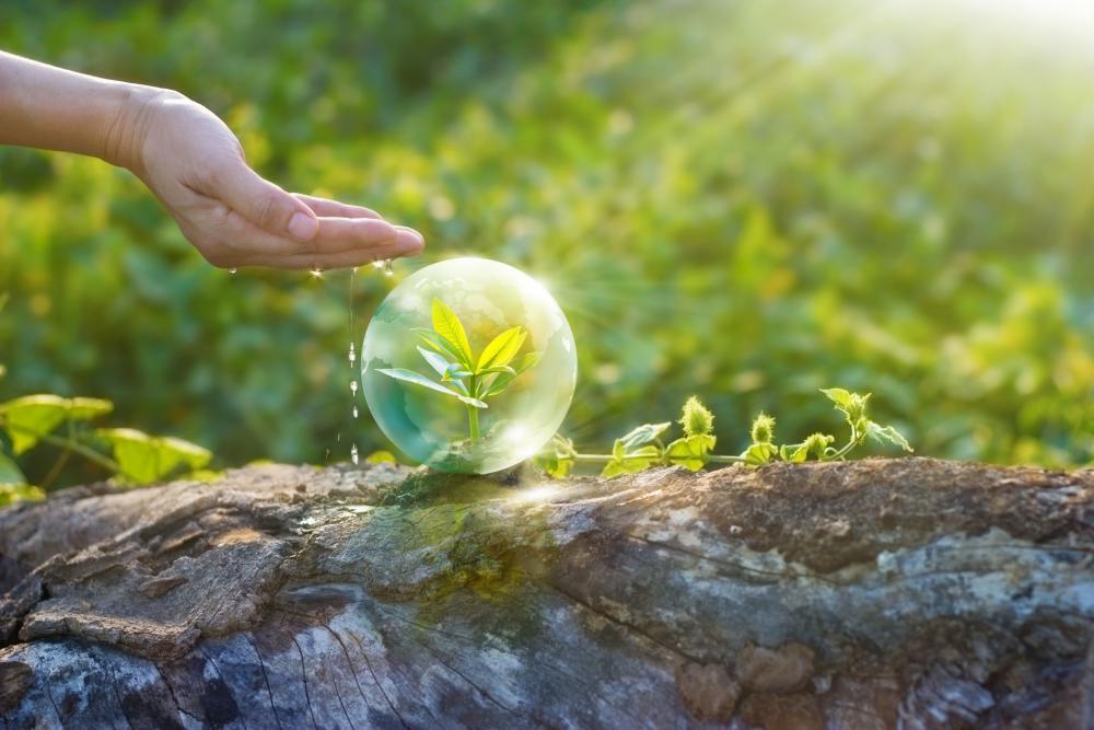 Svjetski dan zaštite okoliša 2017. – Poveži se s prirodom!