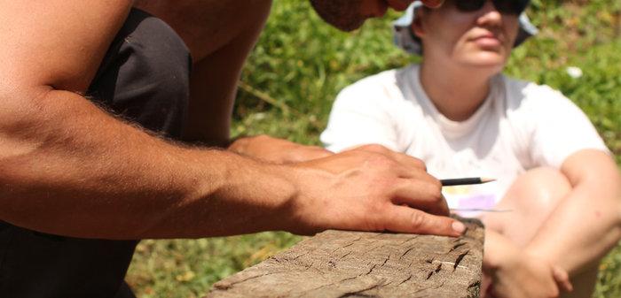 Prirodno graditeljstvo i robinzonski tečaj permakulture