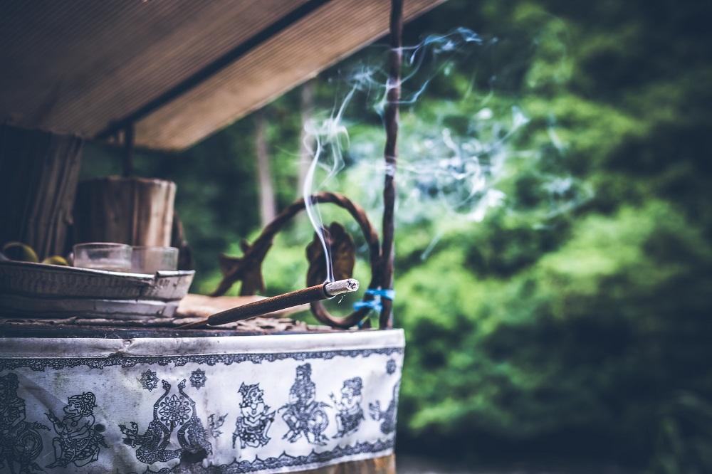 Mistična biljka tamjan